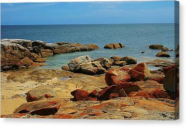 Coffin Bay Np 02 Canvas Print by David Barringhaus