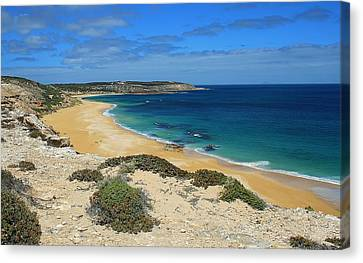 Coffin Bay Np 03 Canvas Print by David Barringhaus