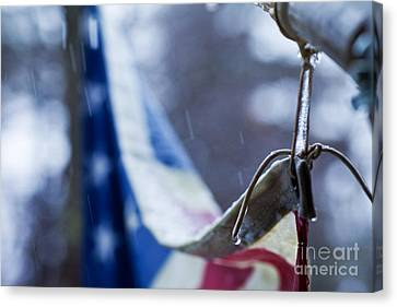 Cold Glory Canvas Print by Sue OConnor
