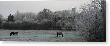 Coleshill Canvas Print by Michael Standen Smith