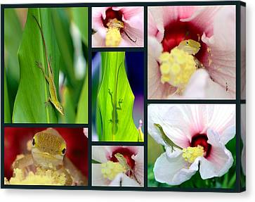 Canvas Print featuring the photograph Collage 001 by George Bostian