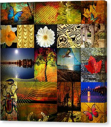 Collage Of Colors Canvas Print by Mark Ashkenazi