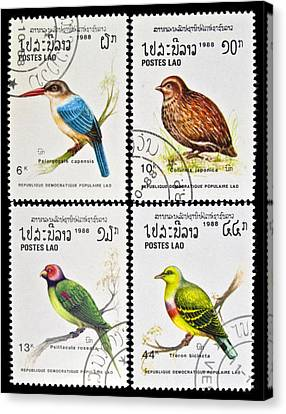 Collection Of Birds Stamps. Canvas Print by Fernando Barozza