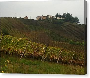 Colline Pavesi Canvas Print by B Russo