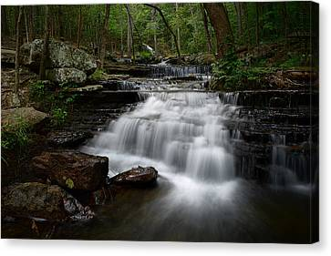 Collins Creek Falls Canvas Print by Renee Hardison