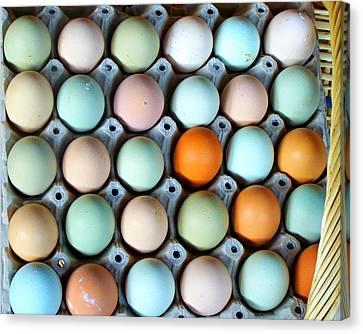 Color Eggs  Canvas Print by Sandra Lira