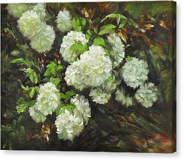Schmid Canvas Print - Color Of White by Katherine Tucker