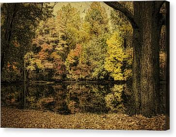 Canvas Print featuring the photograph Color Splash by Mary Timman