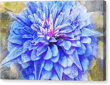 Color Symphony II Canvas Print