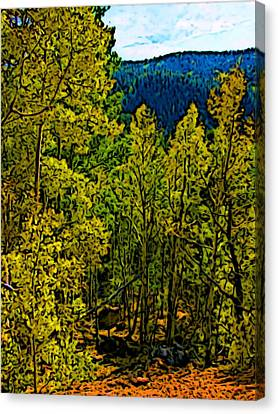 Colorado Aspens Canvas Print by Howard Perry