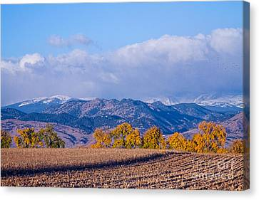 Colorado Autumn Morning Scenic View Canvas Print by James BO  Insogna
