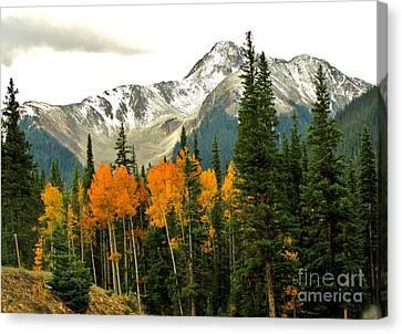 Colorado Colors Canvas Print by Marilyn Smith