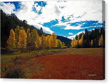 Colorado Mountain Autumn View Canvas Print by Stephen  Johnson