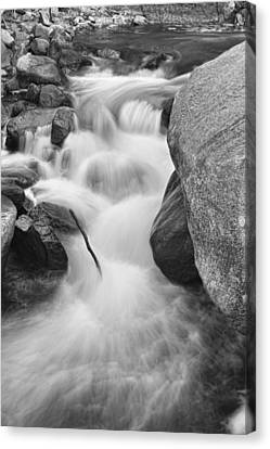 Colorado St Vrain River Trance Bw Canvas Print by James BO  Insogna
