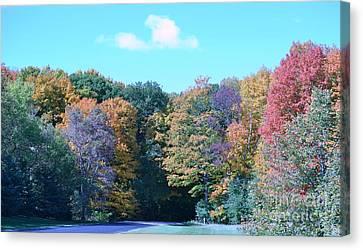 Colored Trees Canvas Print by Dyana Rzentkowski