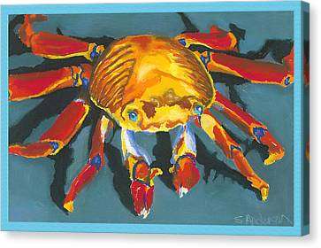 Colorful Crab With Border Canvas Print by Stephen Anderson