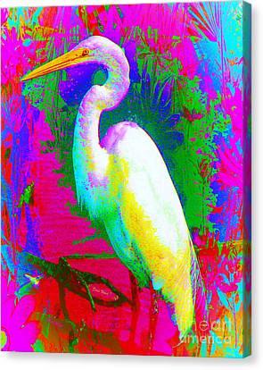 Colorful Egret Canvas Print by Doris Wood