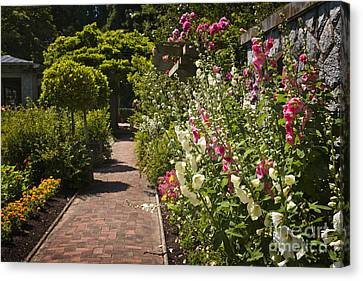 Colorful Flower Garden Canvas Print