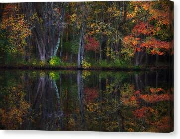 Colorful Forest Canvas Print by Karol Livote