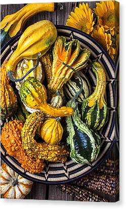 Colorful Gourds In Basket Canvas Print by Garry Gay
