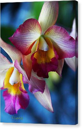 Canvas Print featuring the photograph Colorful Orchids by Kerri Ligatich