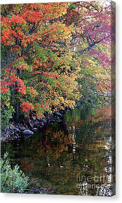 Canvas Print featuring the photograph Colors by Adrian LaRoque