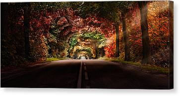 Colourful Way Canvas Print
