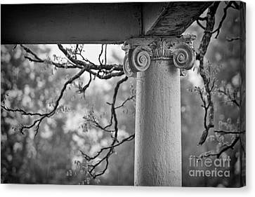 Column In Spring Canvas Print by Susan Isakson
