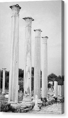 Columns In The Central Courtyard And Stoa Gymnasium And Baths In The Ancient Site Of Salamis Canvas Print by Joe Fox