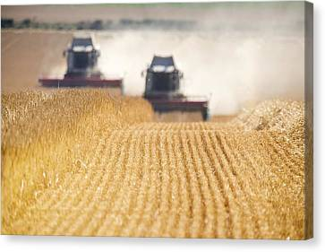 Combines Harvesting Field, North Canvas Print by John Short