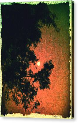 Come Evening Canvas Print by Brian D Meredith