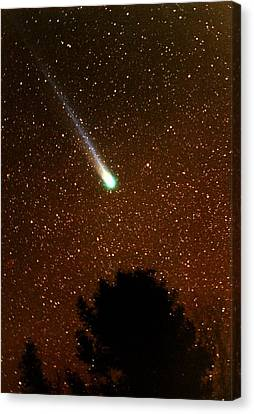 Comet Hyakutake Canvas Print by Rick Frost