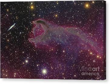 Cometary Globule Cg4 Canvas Print by  Rector NOAO AURA NSF