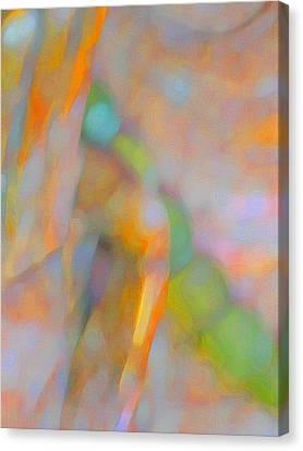Canvas Print featuring the digital art Comfort by Richard Laeton
