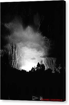 Coming Out Of The Darkness Canvas Print