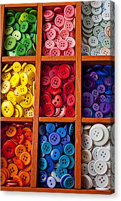 Compartments Full Of Buttons Canvas Print by Garry Gay