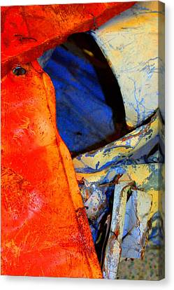 Compressed Canvas Print by Marcia Lee Jones