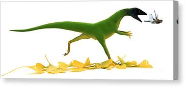 Compsognathus Canvas Print by Jane Burton and Warren Photographic and Photo Researchers