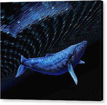 Computer Artwork Of A Humpback Whale Canvas Print by Victor Habbick Visions