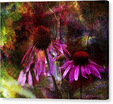 Cone Flower Beauties Canvas Print by J Larry Walker