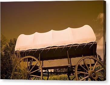 Conestoga Wagon Canvas Print by Darren Greenwood