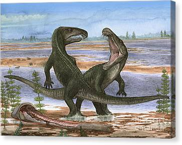 Confrontation Between Two Prehistoric Canvas Print by Sergey Krasovskiy