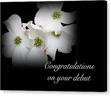 Congratulations On Your Debut - White Dogwood Blossoms Canvas Print by Mother Nature
