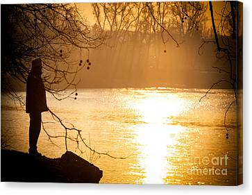Contemplating Canvas Print
