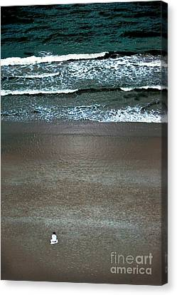 Contemplation Canvas Print