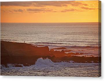 Canvas Print featuring the photograph Contemplation by Susan Rovira