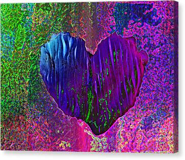 Canvas Print featuring the photograph Contours Of The Heart by David Pantuso