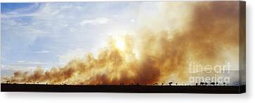 Controlled Burn Masai Mara Game Reserve Canvas Print by Jeremy Woodhouse