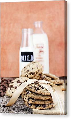 Cookies And Cream Canvas Print by Stephanie Frey