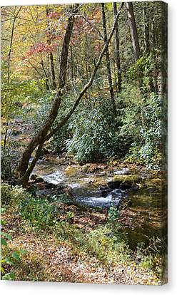 Canvas Print featuring the photograph Cool Creek by Margaret Palmer